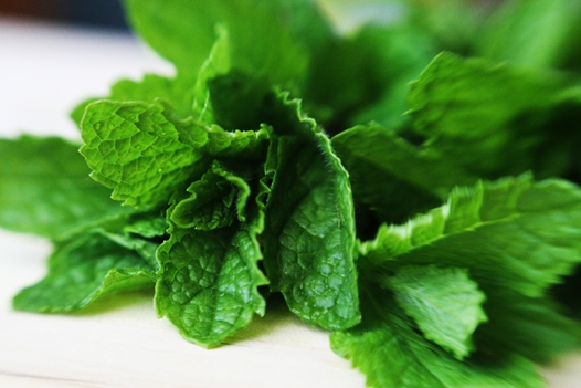 use-these-natural-remedies-to-treat-pain-inflammation-insomnia-mint