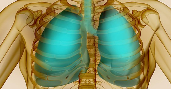 top-10-plants-and-herbs-for-optimal-lung-health-cure-infections-and-repair-pulmonary-damage