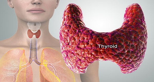 these-are-the-symptoms-of-thyroid-malfunction-and-how-to-cure-it-naturally-2