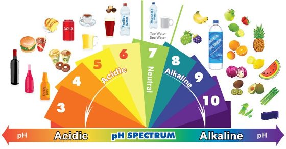 the-alkaline-diet-info-every-cancer-patient-needs-read-immediately