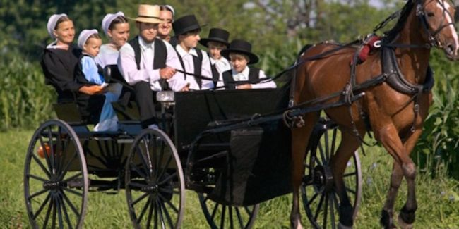 a study of the armish people In a study of amish voting, my colleague donald kraybill and i found   registration among amish people in lancaster county increased by a.
